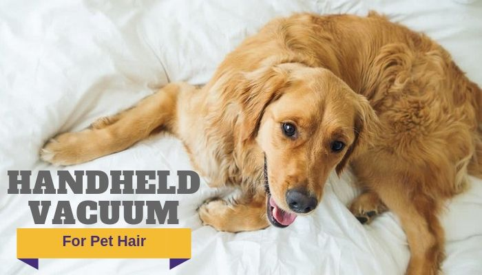 Best Handheld Vacuum For Pet Hair 2019